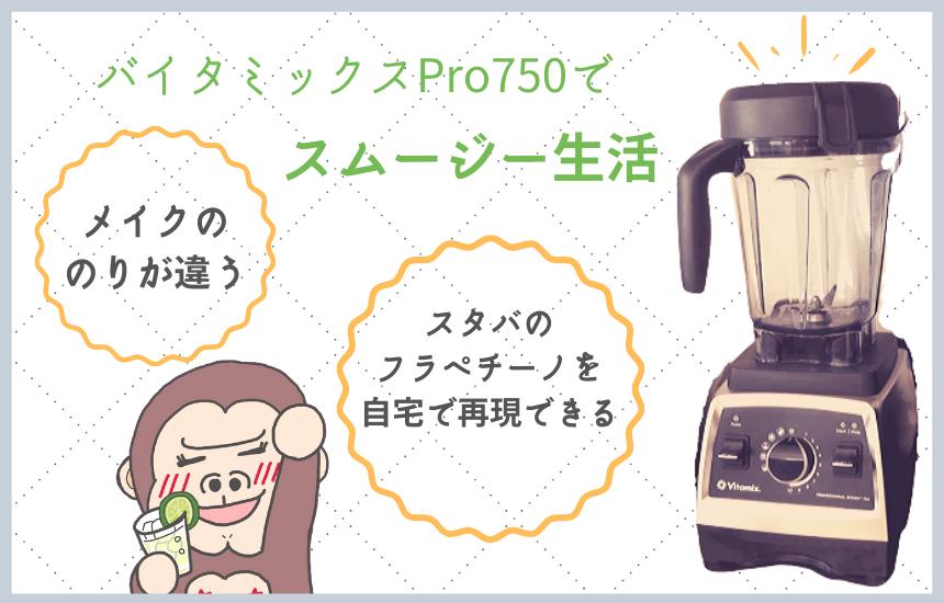 バイタミックスPro750