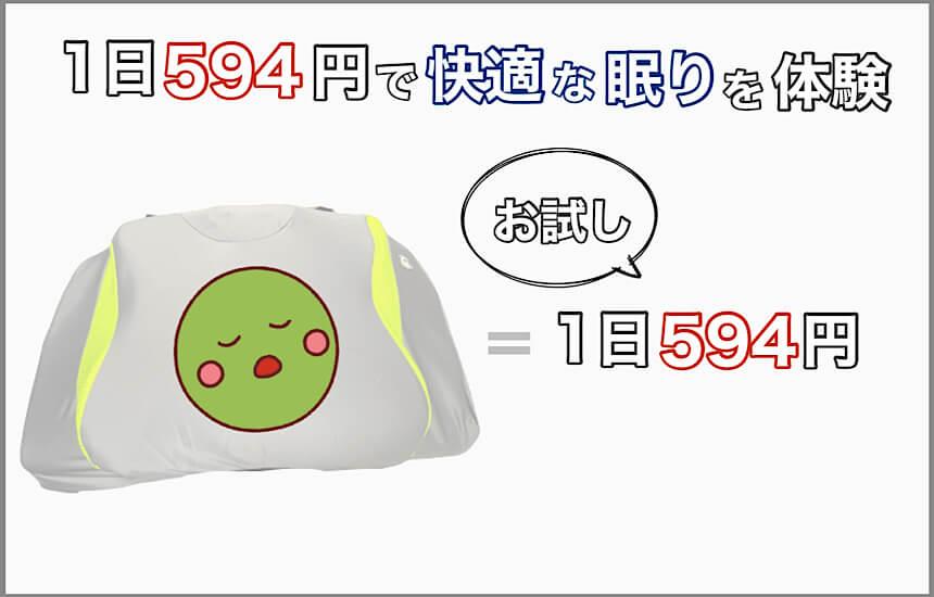 お試しは1日594円でできる
