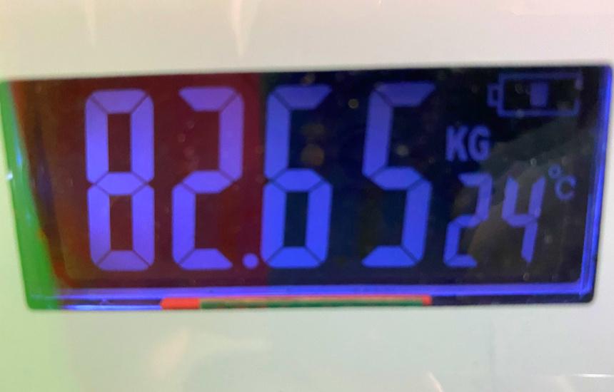 nmnの体重10日目