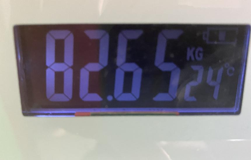 nmnの体重12日目