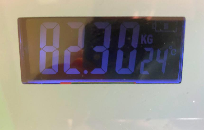 nmnの体重14日目