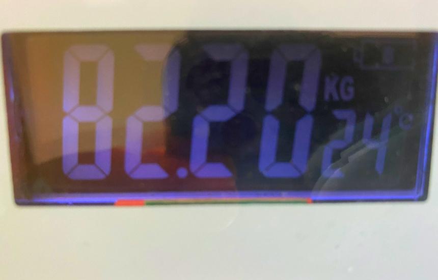 nmnの体重16日目