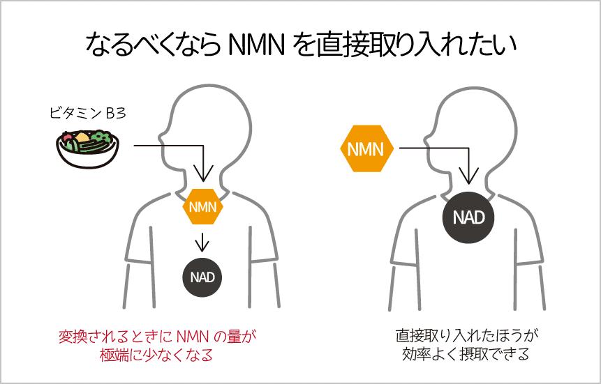 nmnは直接取り入れないと摂取量が少なくなる