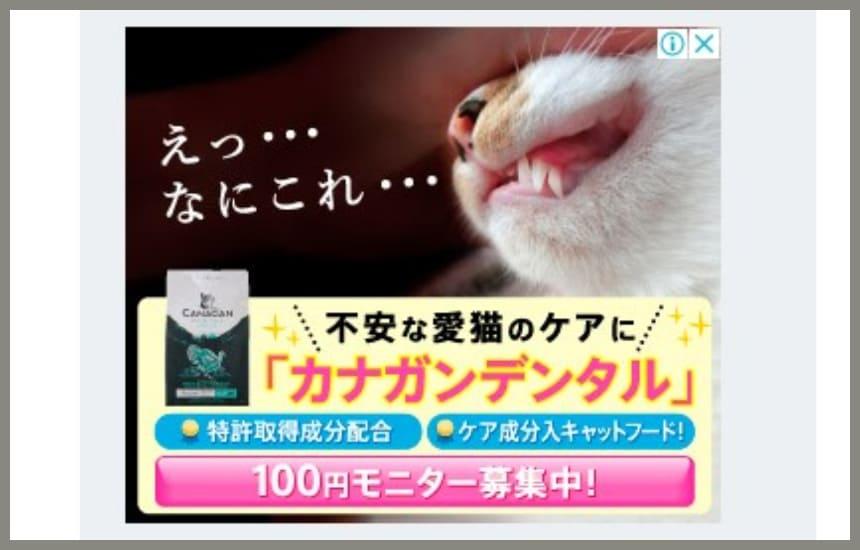 カナガンデンタルキャットフードの100円モニターの広告